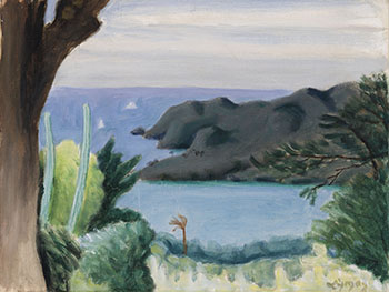 The Leeward Coast, St. Vincent par John Goodwin Lyman