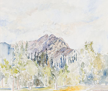 Mountain Series, Aspens by Dorothy Knowles