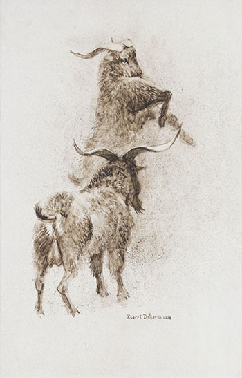 Mountain Goats by Robert Bateman